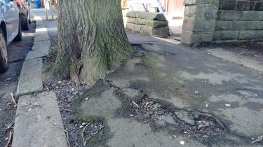 problem roots.jpg