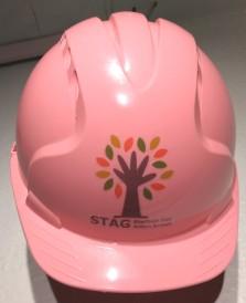 pink helmet.jpg